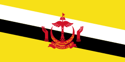 Free Brunei Flag, world flags