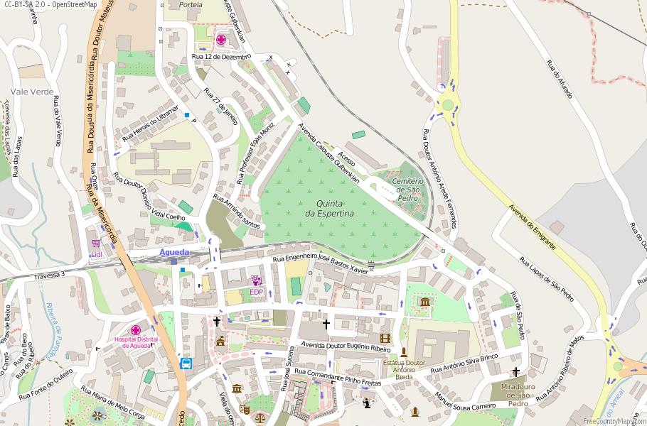 Águeda Portugal Map