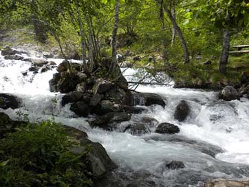 Spain Forest Streams Andorra