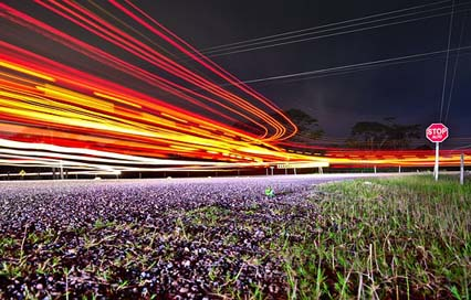 Traffic Transportation-System Long-Exposure Road