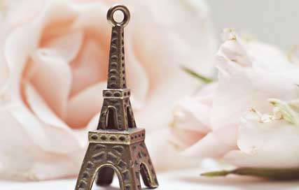 Eiffel-Tower Places-Of-Interest France Roses