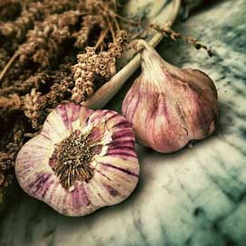 Garlic Aromatic Ingredient Spice Picture