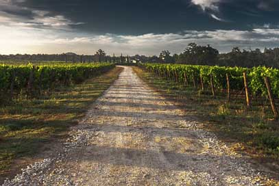 Country-Lane Way Tuscany Gravel-Road Picture