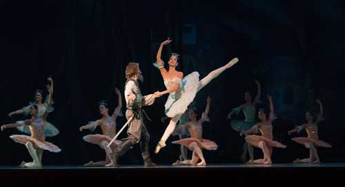 Ballet Ballerina Don-Quixote Performance